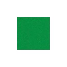 Oracal 641-062 Light Green