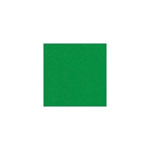 Oracal 641-062 Light Green- Matné š.0,5m