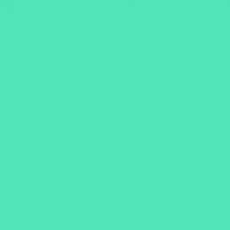 Poli Flex Premium Mint 692