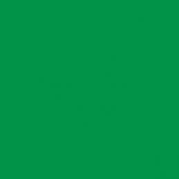 Avery 518 Grass Green EM š. 61,5 cm