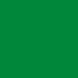 Oracal 651-062 Light Green...